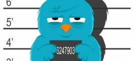 Twitter DNS Engeli